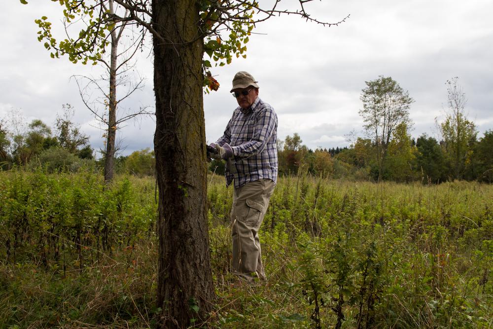 Nationa Public Lands Day Mapleton 9-12 (11 of 1) - Copy