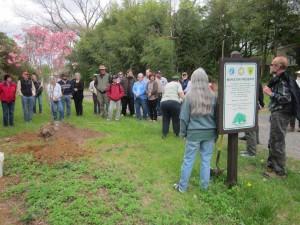 FPNL-Arbor-Day-003